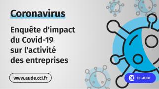 2020-06 visuel Enquete impact covid-19